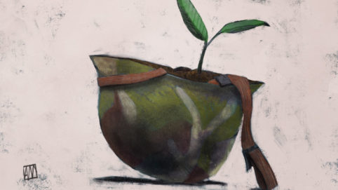 Ale Mercado illustration for Paradise by Zuzanna Charko